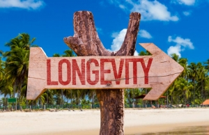 Longevity Nutrition Workshop Event Image