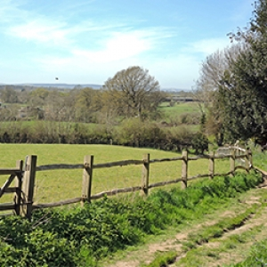 Mid-Sussex Ramblers Walk #2 Event Image